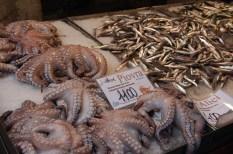 sale at fish market