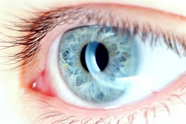 eye-matia