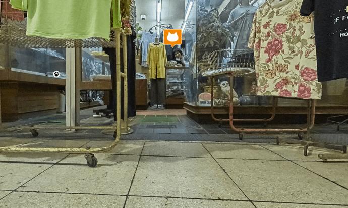Street View Felino