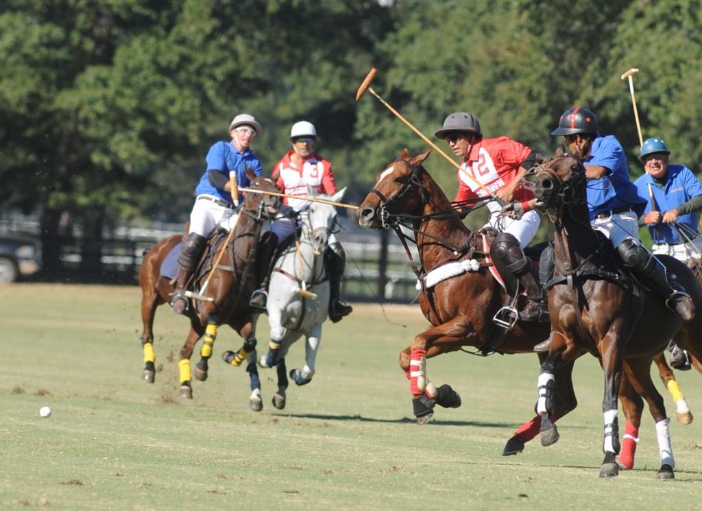 Polo Action at Aiken Polo Club