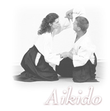 aikido-homepage