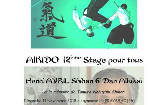 Dimanche 11 Novembre Stage à Prayssac - Henri AVRIL Shihan 6° dan