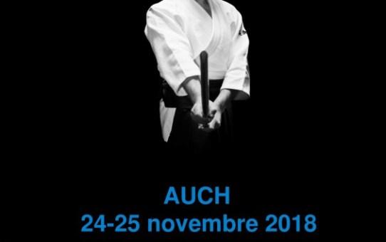 24 & 25 Novembre Stage avec Mickaël Martin à Auch
