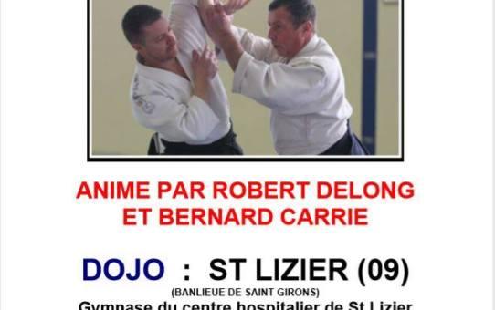 26 Mai Stage à Saint-Lizier Animé par Robert Delong et Bernard Carrié