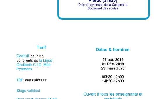 Dimanche 06 Octobre - École des cadres à Pibrac animée par Luc Bouchareu 7ème dan