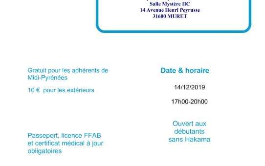 14 Décembre 2019 - Stage Débutants à Muret avec Yannick Bouzerma 4ème dan