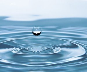 """Be water my friend"""