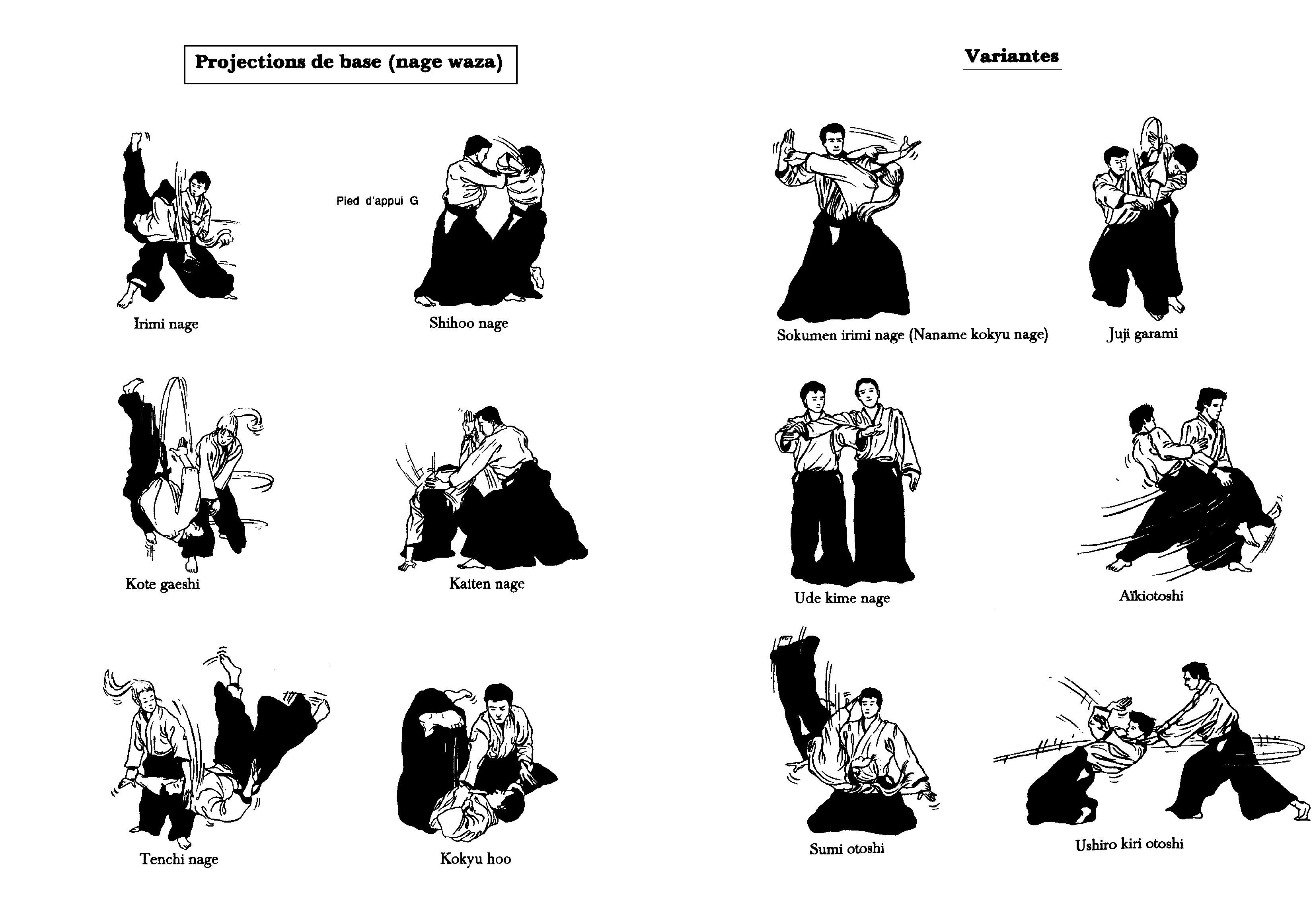 Le Guide Du Debutant