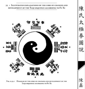 "De ""The Illustrated Canon de Chen Taijiquan de la familia"" por Chen Xin"
