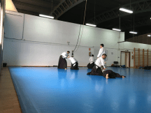 Aikido Aikikai San Vicente - Alicante - 2015, noviembre - IMG_0330