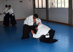 Aikido Aikikai San Vicente - Alicante - Curso Roberto Sánchez - Mariano Nikyo - 1000204_10200939954238447_1550594560_n