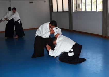 Aikido Aikikai San Vicente - Alicante - Curso Roberto Sánchez - 2013 jun - 166