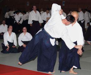 Hayato Osawa Shihan, Madrid 2014 - IMG_1437_retoc&rec