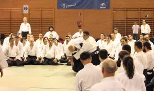 Hayato Osawa Shihan, Madrid 2014 - IMG_1677_retoc