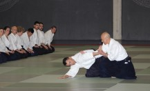 Hayato Osawa Shihan, Madrid 2014 - IMG_1788_retoc