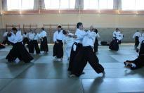 Curso Nacional de Aikido en Alicante, Tomás Sánchez y Roberto Sánchez, noviembre 2015 (Fidel Pérez Sebastián, Tenchinage)