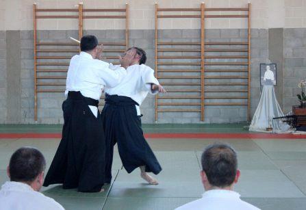 Curso Nacional de Aikido en Alicante, Tomás Sánchez y Roberto Sánchez, noviembre 2015 (Tachi Dori Yoko)