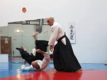 Curso Aikido AETAIKI Aikikai Alcoy Alicante - David Sánchez y Ángel L.Martínez - Comisión de Enseñanza AETAIKI - 0012