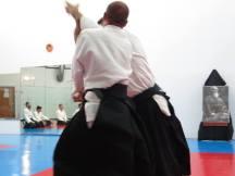 Curso Aikido AETAIKI Aikikai Alcoy Alicante - David Sánchez y Ángel L.Martínez - Comisión de Enseñanza AETAIKI - 0018