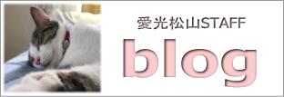 愛光不動産松山店 スタッフブログ