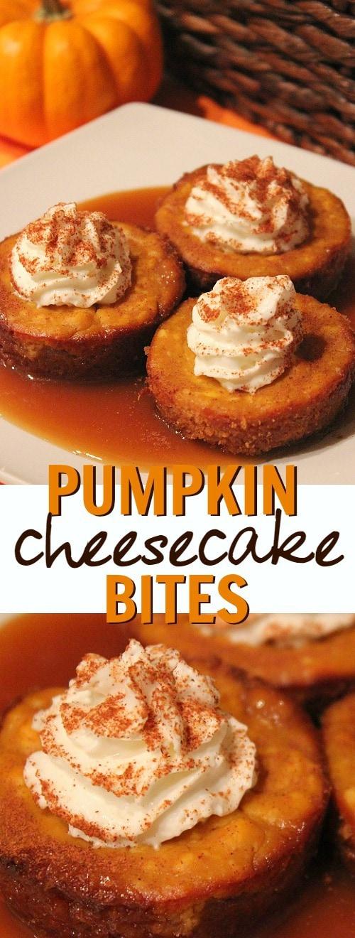 pumpkin-caramel-cheesecake-bites-dessert-recipe-this-is-such-a-delicious-fall-pumpkin-dessert-idea1