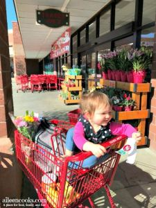 Girl child in trader joe's shopping cart.