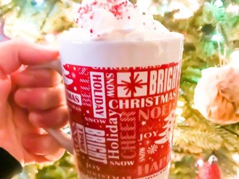 Homemade Peppermint Hot Chocolate Recipe