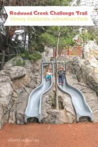 Two children on the top of the slides at the Redwood Creek Challenge Trail inside Disney California Adventure Park