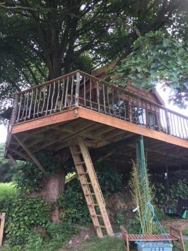 airbnb-treehouse