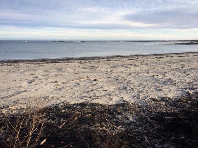 silvery sands of Rosehearty   Ailish Sinclair beach