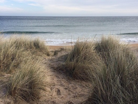 looking through the dunes at the sea