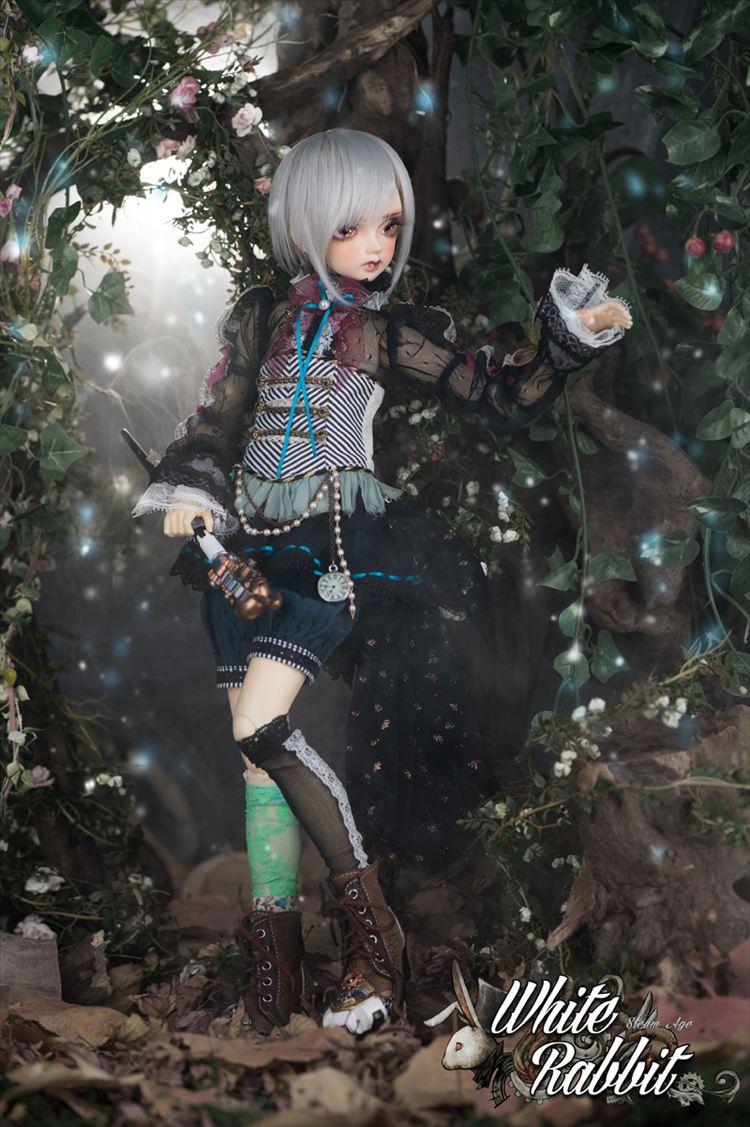 可愛い美しい人形 36.3
