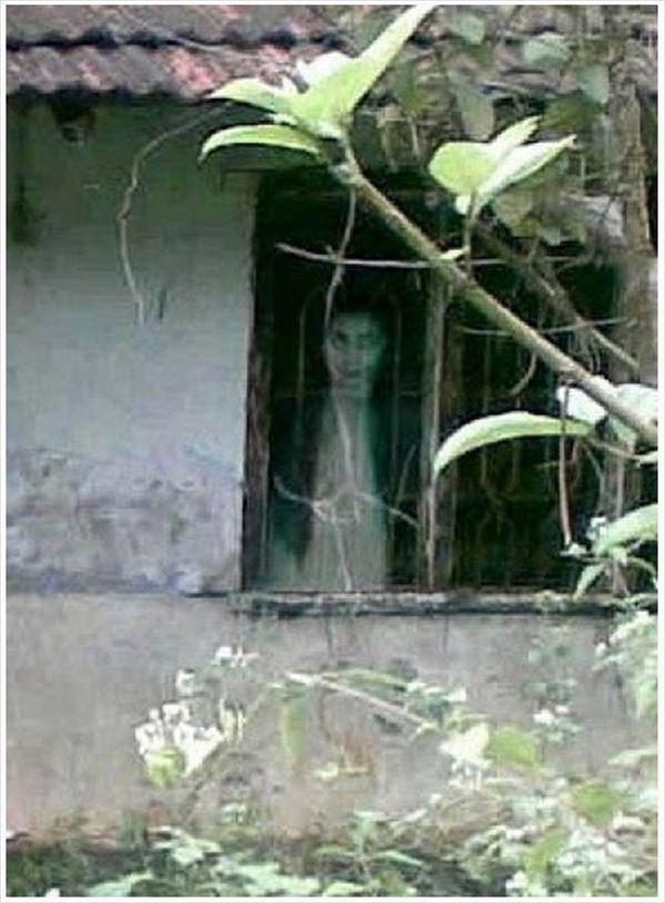 怖い画像 15