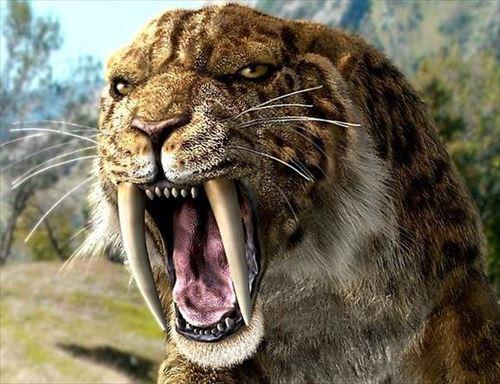 古代に実在した巨大なネコ科動物(絶滅種)