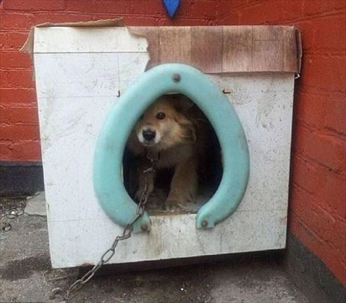 何だこれ?ロシア人の修理・DIYがおかしい写真