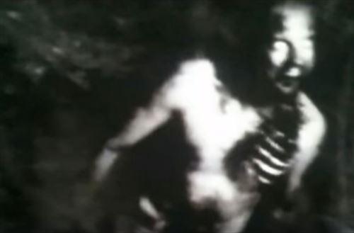 山林にあるカメラがとらえた恐ろしい瞬間(幽霊ほか)
