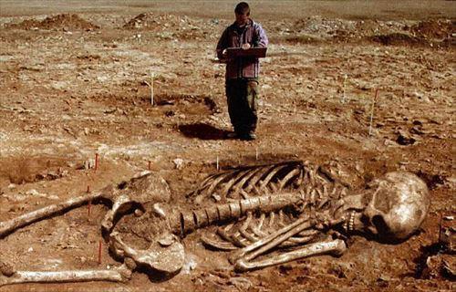 ほとんど嘘?!発見された巨人の骸骨・12種