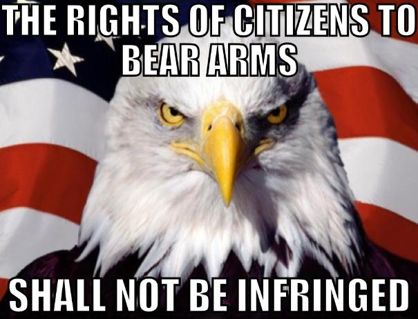 second amendment bird meme