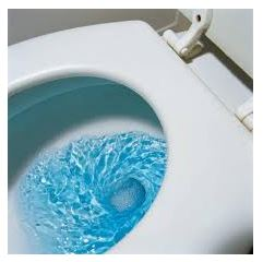 blue toilet water