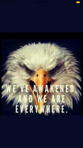 the eagle awakened