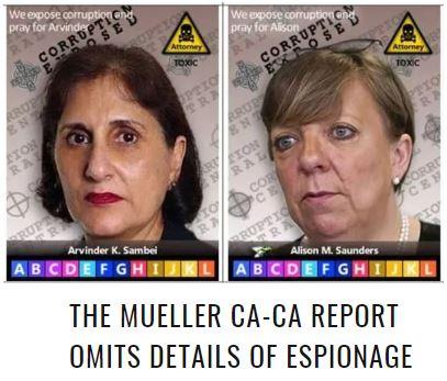 arvinder alison espionage