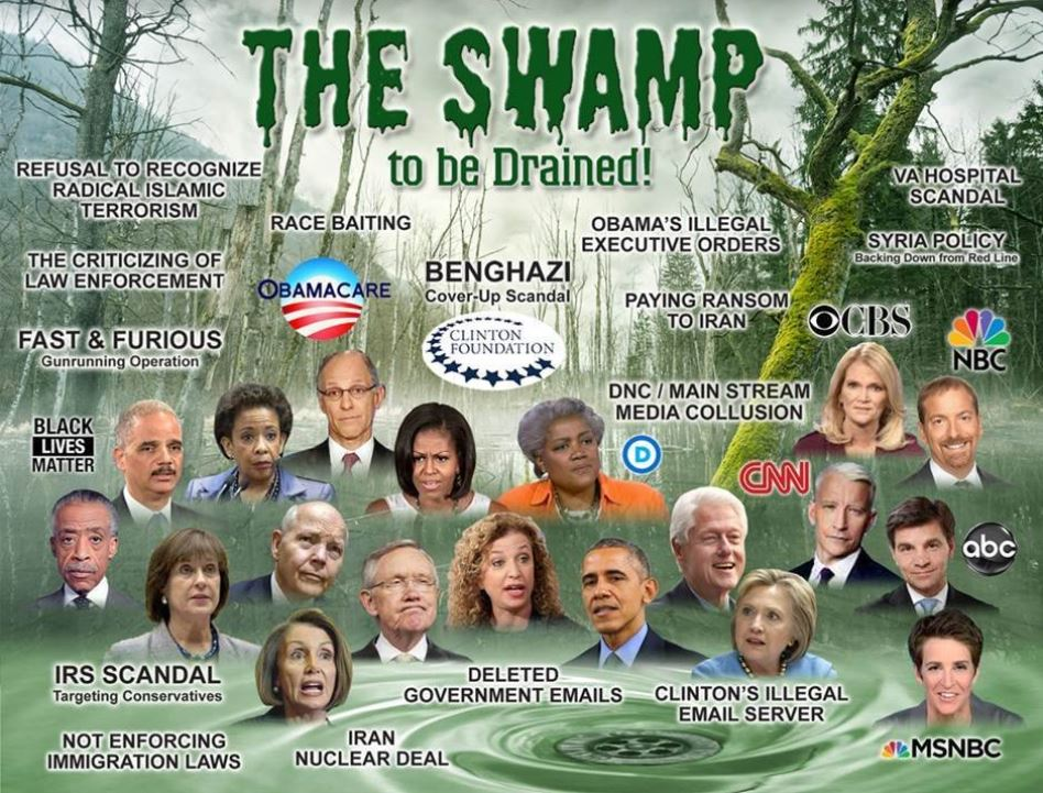 the swamp drained