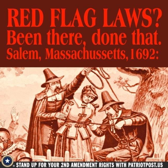 red flag gun control.jpg