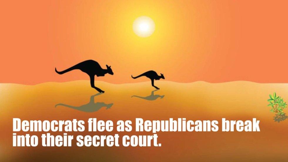 democrats flee kangeroo.jpg