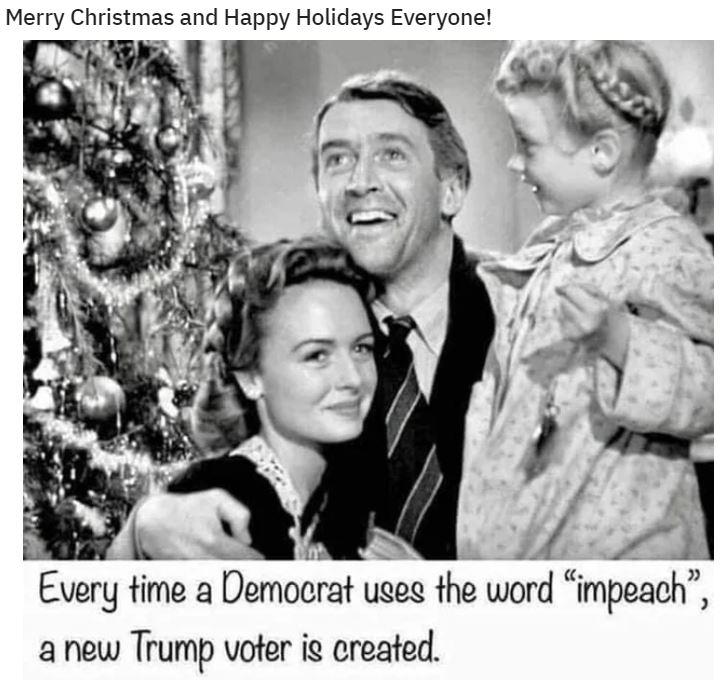 democrat impeach voter.JPG
