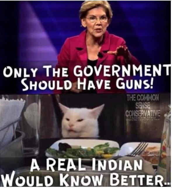 elizabeth warren indian.JPG