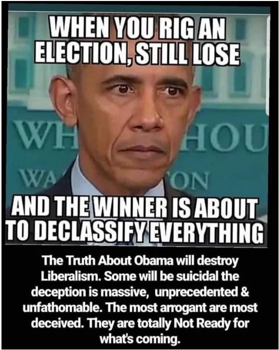 obama rigged election.JPG