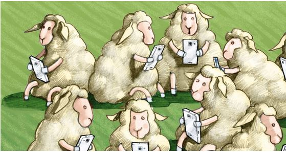 sheep phones.JPG