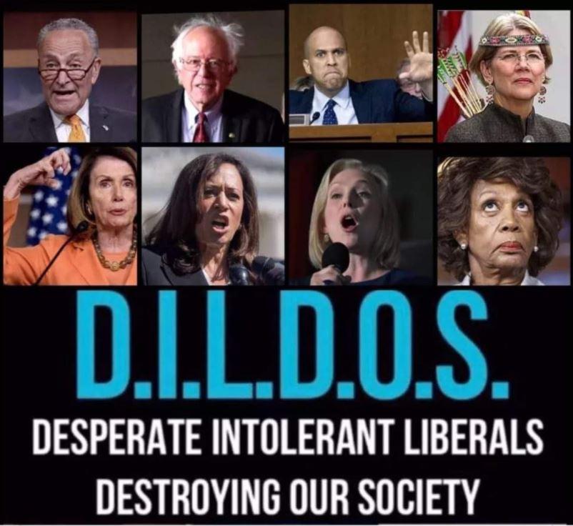 dildos democrats