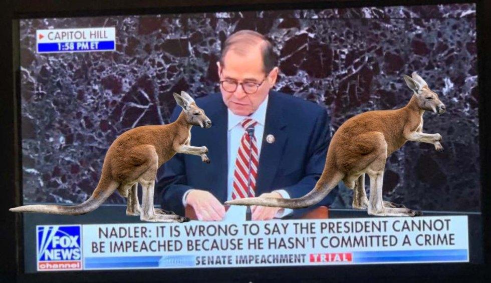nadler kangaroo